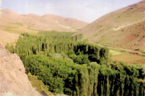 کنگاور شهر تمدن و تدین - سراب کبوترلانه - طبیعت زیبای کنگاور